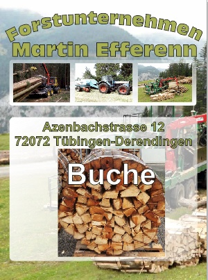 Buchenholz Brennholzhandlung Tübingen | Forstunternehmen Martin Efferenn
