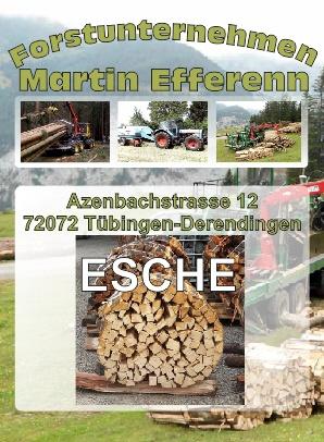 Eschenholz Brennholzhandlung Tübingen | Forstunternehmen Martin Efferenn